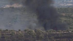 Forêt de chêne de chêne brûlant avec de la fumée noire, possibilité éloignée dans 4k banque de vidéos
