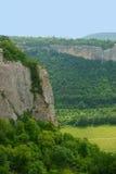 Forêt de ciel de montagne de paysage Photographie stock libre de droits