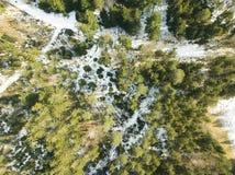 Forêt de conifère de ci-dessus dans le bourdon d'horaire d'hiver images stock