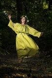 Forêt de conte de fées d'imagination Photographie stock