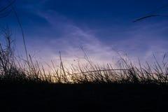 Forêt de coucher du soleil Image libre de droits
