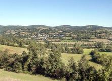 Forêt de Frances Photo stock