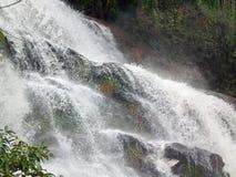 Forêt de l'eau de parc naturel de cascade images libres de droits