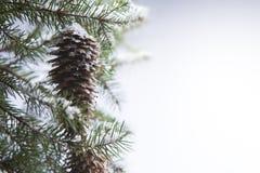 Forêt de l'hiver d'art Photographie stock