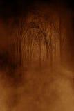 Forêt de la mort Image libre de droits
