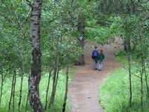 Forêt de marche de jeunes couples Photos stock