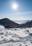 Forêt de matin et chaîne de montagne couvertes de neige de Monténégro dans la distance Image libre de droits