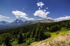 Forêt de montagne Photographie stock libre de droits