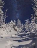 Forêt de montagne de Milou la nuit avec des étoiles Photographie stock