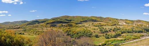 Forêt de montagne pendant l'automne photo stock