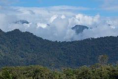 Forêt de nuage en Equateur Photos stock