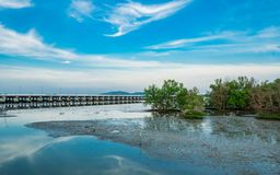 Forêt de palétuvier, pont concret et beaux ciel bleu et clou images libres de droits