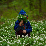Forêt de petit garçon au printemps avec beaucoup de fleurs photographie stock libre de droits