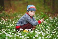 Forêt de petit garçon au printemps avec beaucoup de fleurs image libre de droits