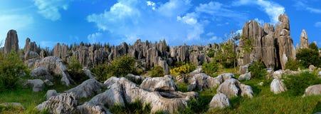 Forêt de pierre de Chine Photo libre de droits