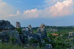 Forêt de pierre de Chine image libre de droits