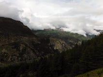 Forêt de pin dans un paysage de l'Himalaya Photo libre de droits