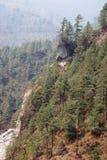 Forêt de pin en Himalaya, Népal Image libre de droits