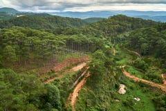 Forêt de pin - vue courbe - du funiculaire de Dalat à la pagoda de fuite de Truc Dalat, Vietnam image libre de droits