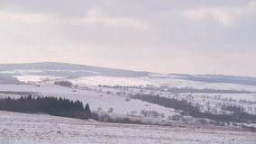 Forêt de pré classée par campagne de paysage de montagne d'hiver banque de vidéos