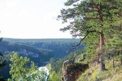 Forêt de rivière de roche, horizon Photographie stock libre de droits