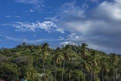 Forêt de San Juan del Sur, Nicaragua Photos stock