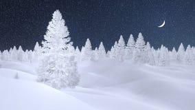Forêt de sapin de Milou la nuit chutes de neige Photographie stock