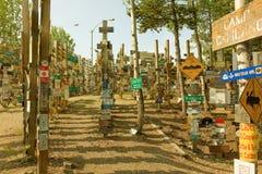 Forêt de signe Photo libre de droits