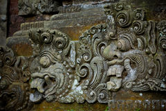 Forêt de singe dans Bali (Sangeh) Photo stock
