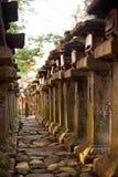 Forêt de tours dans le tombeau de kasuga, Nara Japon Images stock