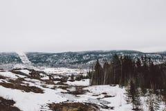 Forêt de vue et montagnes et neige étonnantes image libre de droits