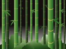 Forêt en bambou la nuit Photo libre de droits