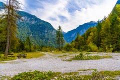 Forêt en montagnes d'Alpes près de Koenigssee, Konigsee, parc national de Berchtesgaden, Bavière, Allemagne photos libres de droits