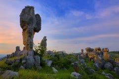 Forêt en pierre Images libres de droits