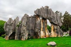 Forêt en pierre Photographie stock libre de droits