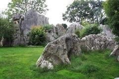 Forêt en pierre Images stock