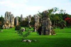Forêt en pierre, Chine Image libre de droits