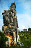 Forêt en pierre Chine Photographie stock libre de droits