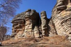 Forêt en pierre de prairie dans le paysage d'automne Photos libres de droits
