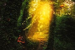 Forêt enchantée avec un chemin, des animaux, des papillons et des lumières de scintillement illustration libre de droits