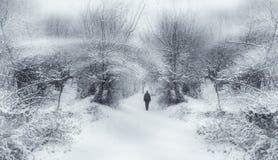 Forêt enchantée de conte de fées d'hiver images libres de droits