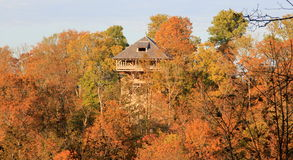 Forêt ensoleillée d'automne avec la tour photos libres de droits