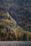Forêt et cascade d'automne par le lac Konigssee images libres de droits