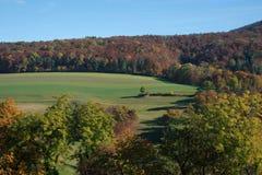Forêt et champs d'automne Silhouette d'homme se recroquevillant d'affaires Image stock
