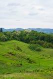 Forêt et collines Images stock