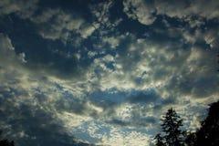 Forêt et cumulus du nord-ouest Pacifiques photo stock