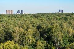 Forêt et immeubles verts sur l'horizon image stock