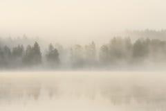 Forêt et lac brumeux à l'aube Photo libre de droits