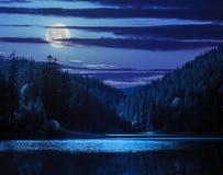 Forêt et lac de pin près de la montagne tôt le matin à n images stock