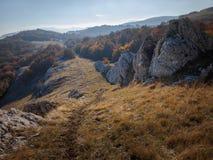 Forêt et montagne Image stock